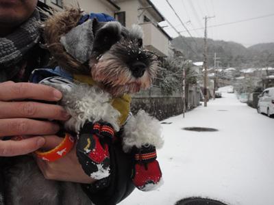 101231_kuzuryu_tx5.jpg