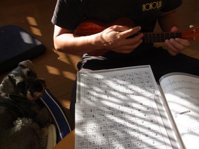 cx3_100922_ukulele.jpg