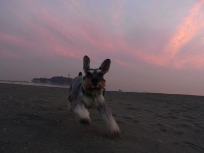 cx3_101201_sunset_2.jpg